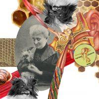 Marie Rey (collage numérique)